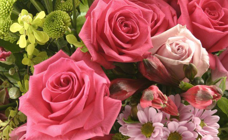 Välja blommor till trädgården Image